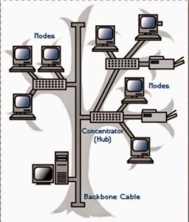 macam jenis topologi jaringan komputer